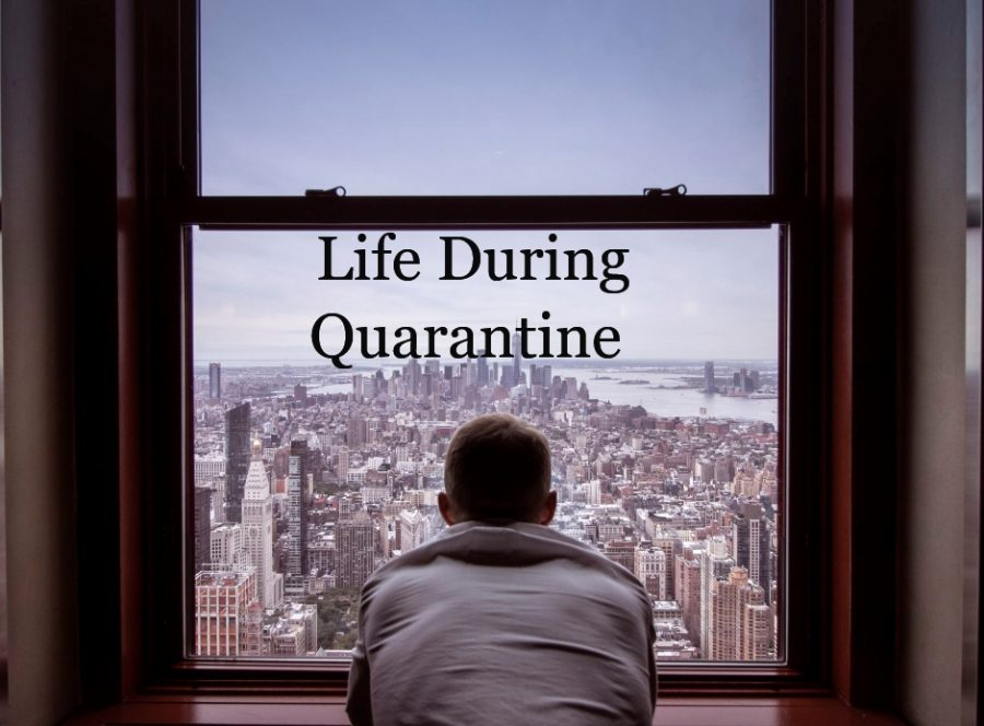 Life+during+and+after+Quarantine%3A+Dreaming+of+a+better+tomorrow